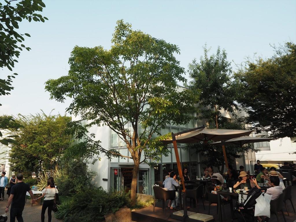 代官山キタムラ写真機店の遠景