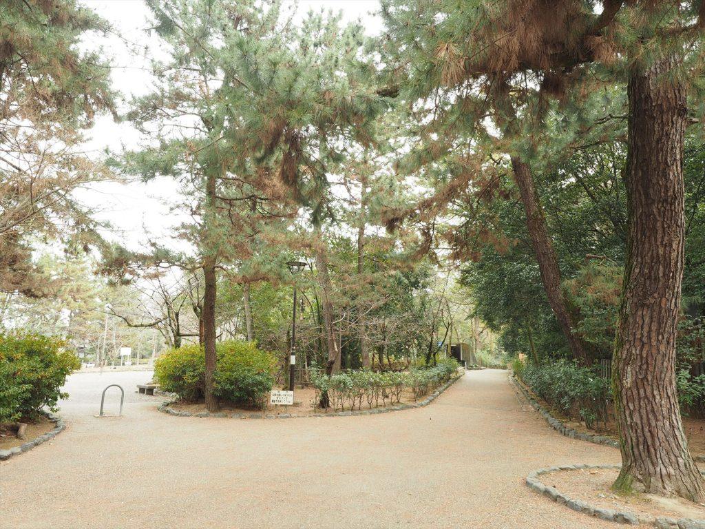 八坂神社の北側の道